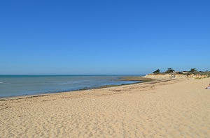 Beaches in Sainte-Marie-de-Ré