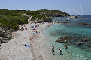 Beaches in Ile des Embiez