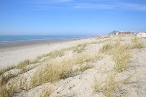 Beaches in Berck