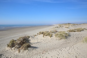 Beaches in Merlimont