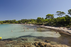 Beaches in Porquerolles