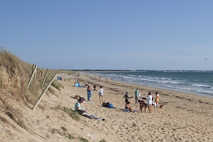 Beaches in Plouharnel
