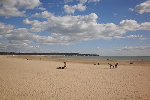 Beaches in Saint-Georges-de-Didonne