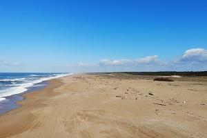 Beaches in Tarnos