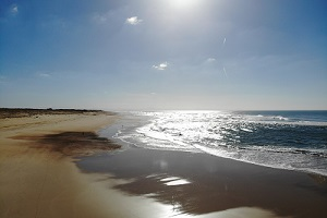Beaches in Seignosse